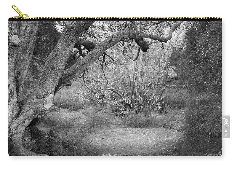 Landscape Carry-all Pouch featuring the photograph Sycamore Grove Black and White by Karen W Meyer