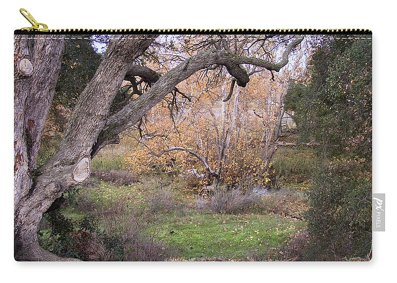 Landscape Carry-all Pouch featuring the photograph Sycamore Grove Fall by Karen W Meyer