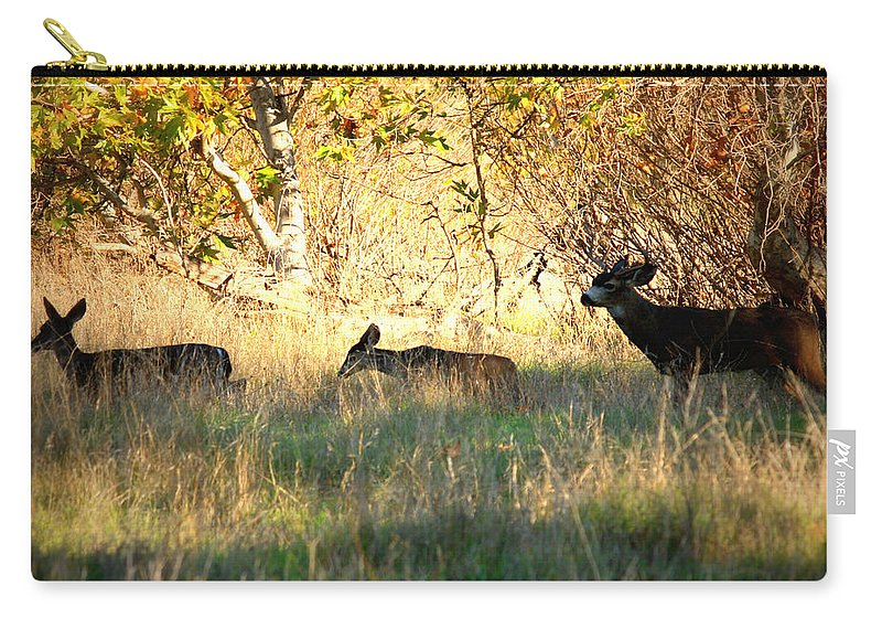 Deer Carry-all Pouch featuring the photograph Sycamore Grove Series 10 by Carol Groenen