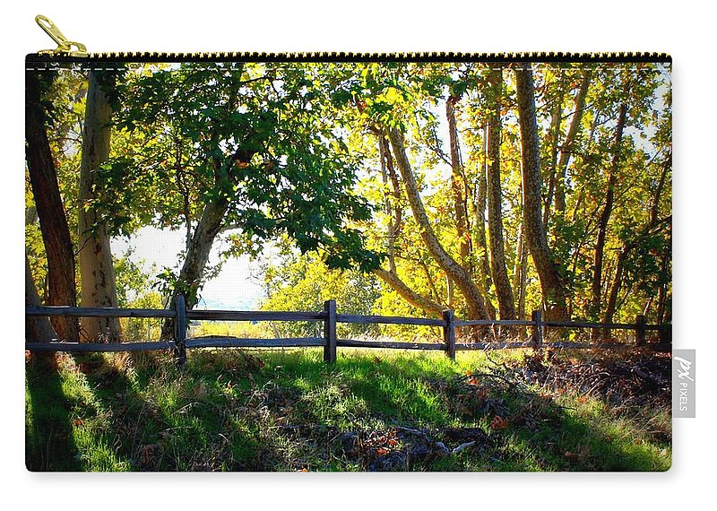 Fall Carry-all Pouch featuring the photograph Sycamore Grove Series 12 by Carol Groenen