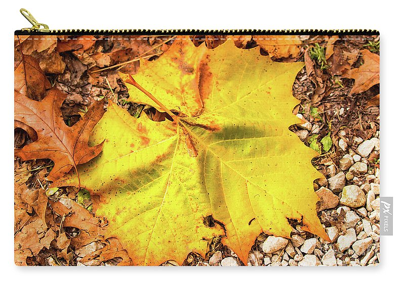 Fall Carry-all Pouch featuring the photograph Sycamore Leaf In Fall by Edie Ann Mendenhall