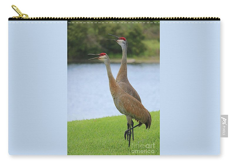 Sandhill Carry-all Pouch featuring the photograph Sychronized Sandhills by Carol Groenen