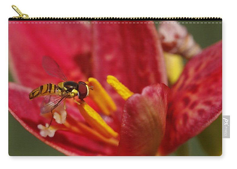 Flower Carry-all Pouch featuring the photograph Table For One by Deborah Benoit