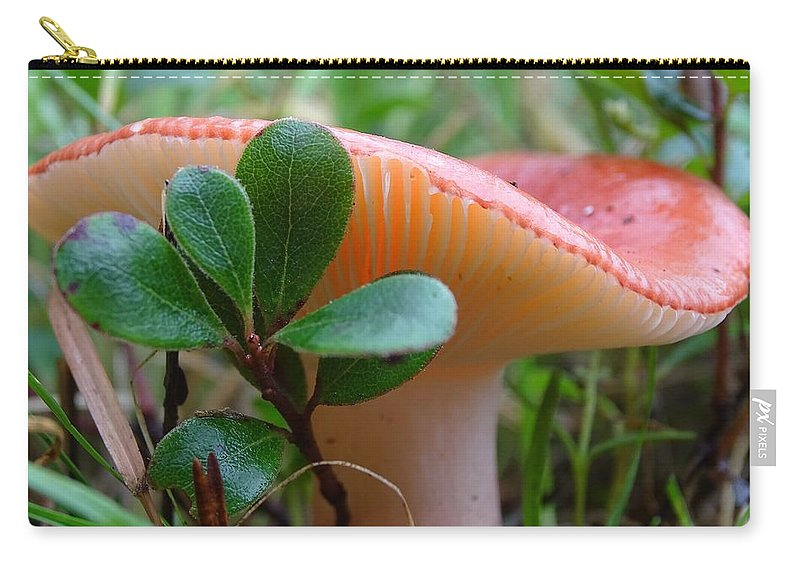 Mushroom Carry-all Pouch featuring the photograph Take A Moment...be Mindful. by Amelia Emery