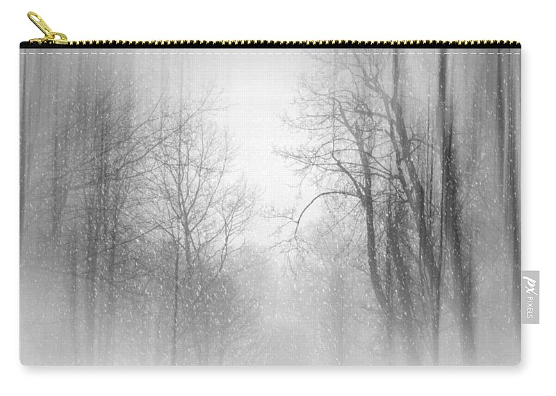 Snow Scene Carry-all Pouch featuring the photograph Take Me There by Diana Angstadt