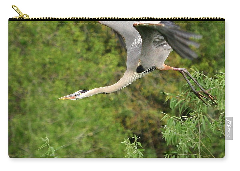 Blue Heron Flight Flying Bird Photography Digital Art Photograph Florida Shore Carry-all Pouch featuring the photograph Take Off by Shari Jardina