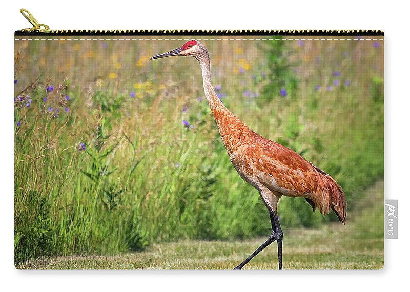 Sandhill Carry-all Pouch featuring the photograph Taking A Stroll by Emma England