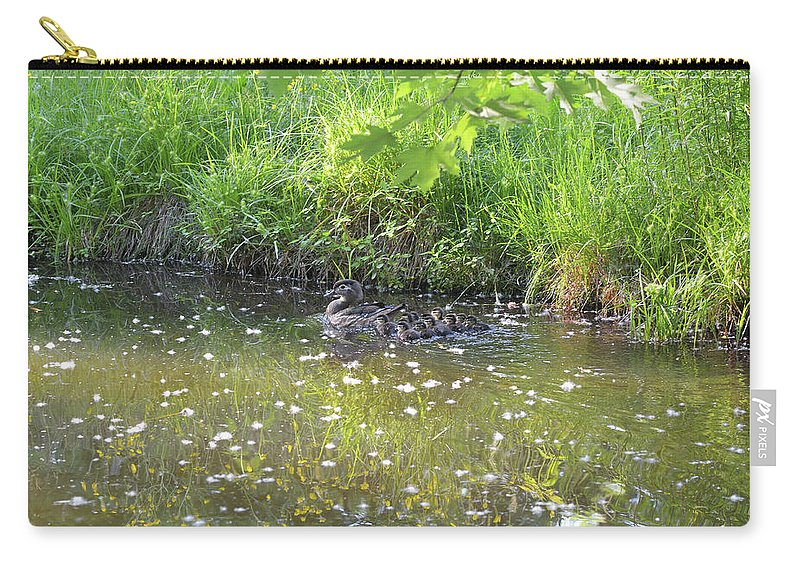 Wood Duck Carry-all Pouch featuring the photograph Taking A Stroll With Mom Troughs Floral Reflections by Asbed Iskedjian