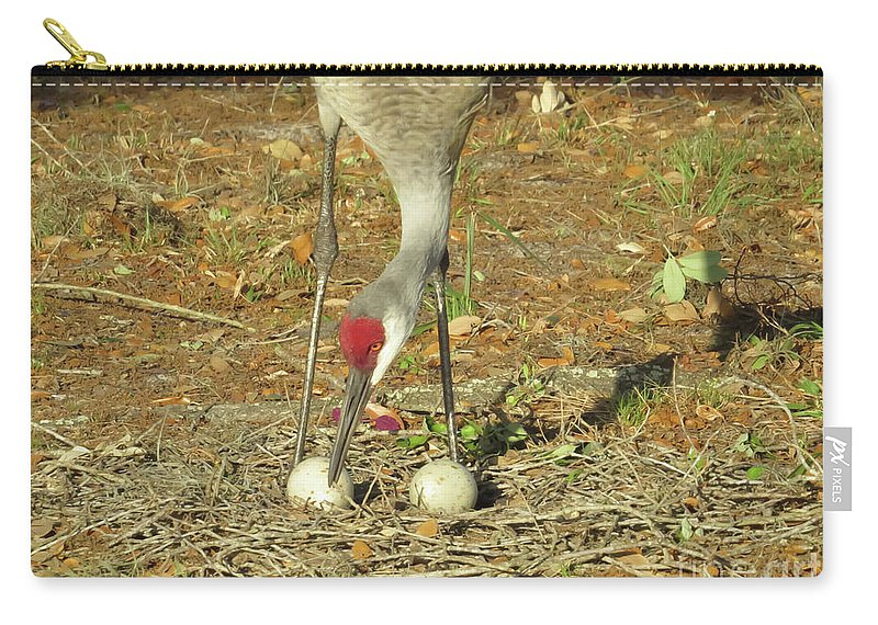 Sandhill Cranes Carry-all Pouch featuring the photograph Taking Care Of Her Eggs by Zina Stromberg