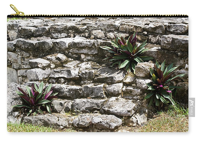 Joy Carry-all Pouch featuring the photograph Talum Ruins Plant Life by Douglas Barnett