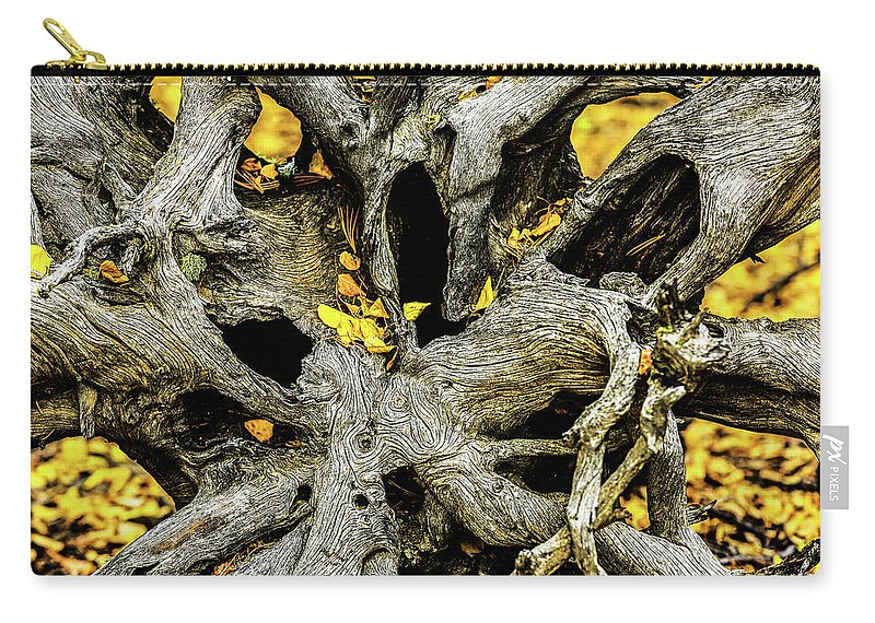 Aspen Leaves Carry-all Pouch featuring the photograph Tangled Roots by Kurt Meredith
