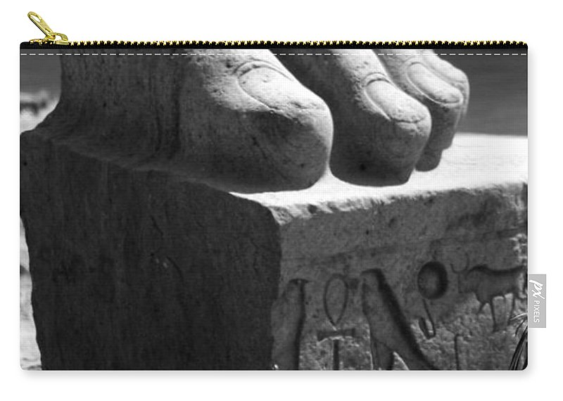Tanis Carry-all Pouch featuring the photograph Tanis Foot by Donna Corless