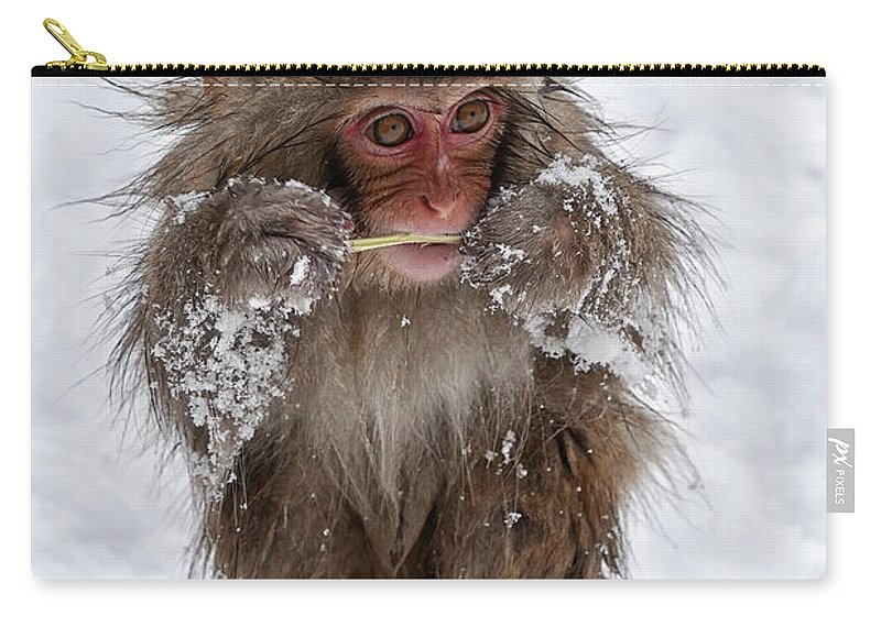 Jigokudani Carry-all Pouch featuring the photograph Tasty? by Kuni Photography