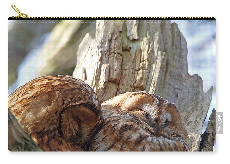 Tawny Owl Carry-all Pouch featuring the photograph Tawny Owls In Love by Bob Kemp