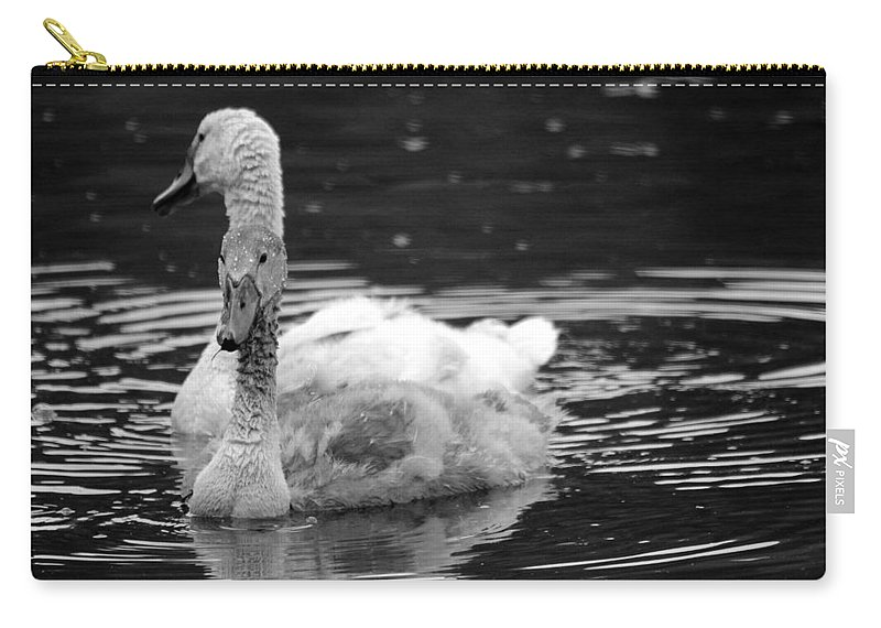 Swan Carry-all Pouch featuring the photograph Teenage Siblings by Jake Danishevsky