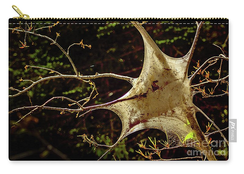 Insect Carry-all Pouch featuring the photograph Tent Caterpillars In Rural Ontario by Christina Wedow