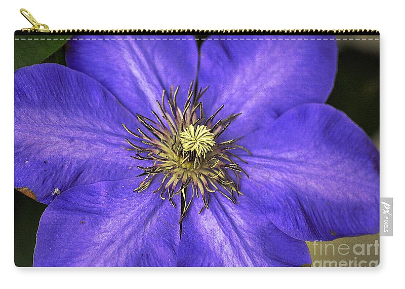 Clay Carry-all Pouch featuring the photograph Tenticles by Clayton Bruster