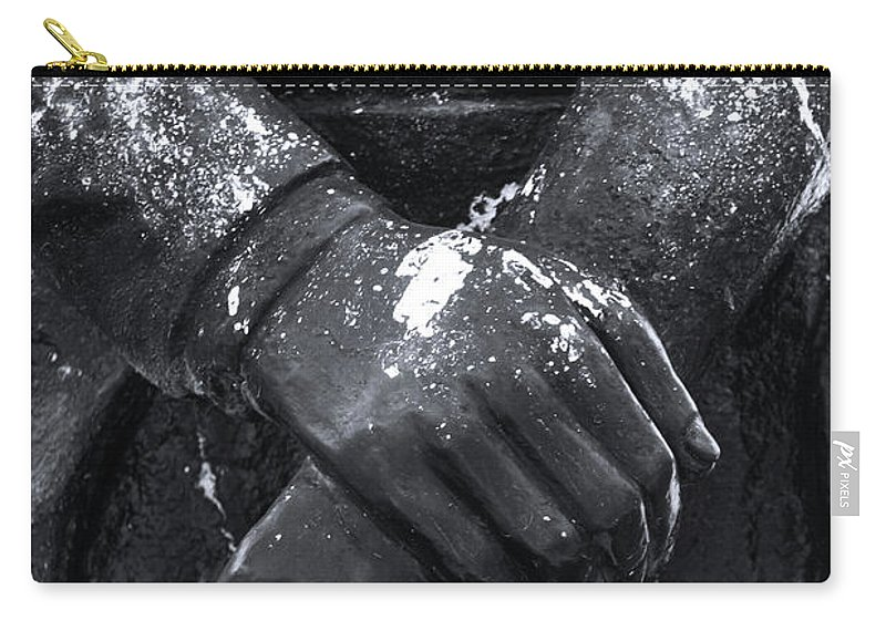 Mati Carry-all Pouch featuring the photograph Testie by Jez C Self