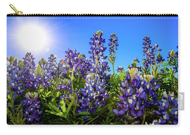 Texas Carry-all Pouch featuring the photograph Texas Bluebonnets Backlit II by Greg Reed