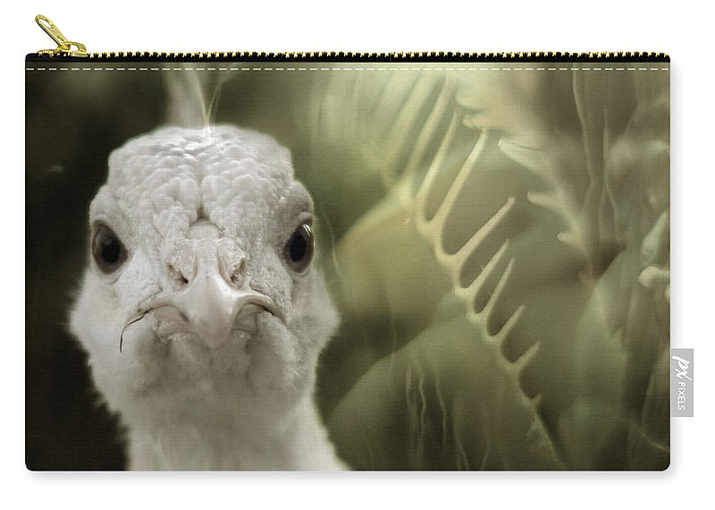 Peacock Carry-all Pouch featuring the photograph Th White Peacock by Angel Tarantella
