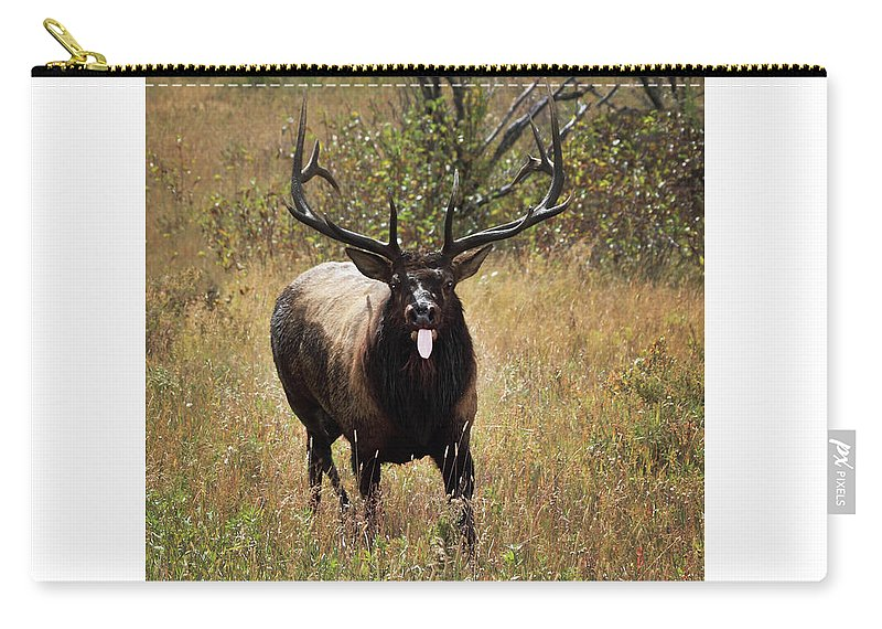Tongue Carry-all Pouch featuring the photograph That Moment When by Shane Bechler
