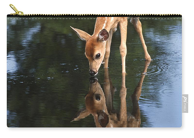 Deer Carry-all Pouch featuring the photograph That Must Be Me by Sandra Bronstein