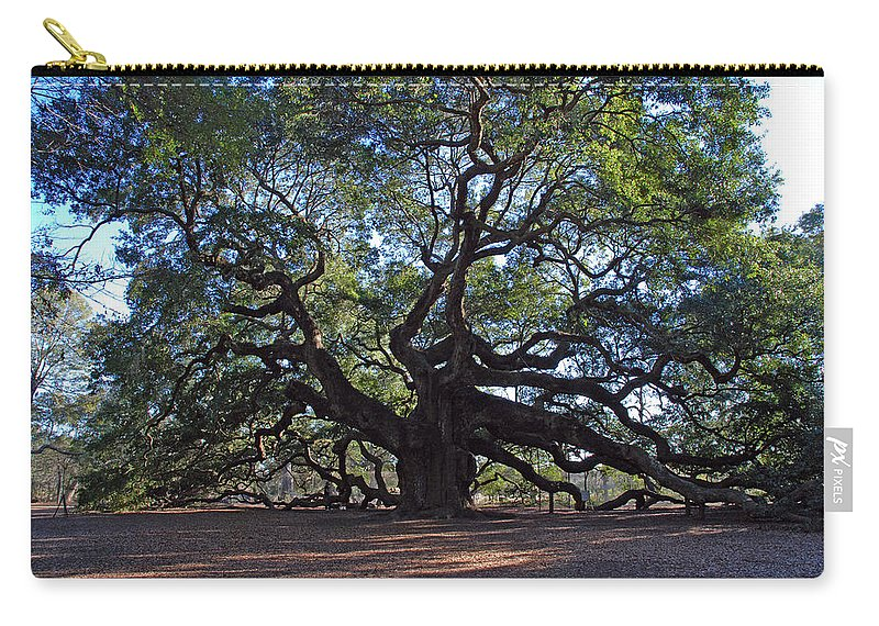 Photography Carry-all Pouch featuring the photograph The Angel Oak In Spring by Susanne Van Hulst