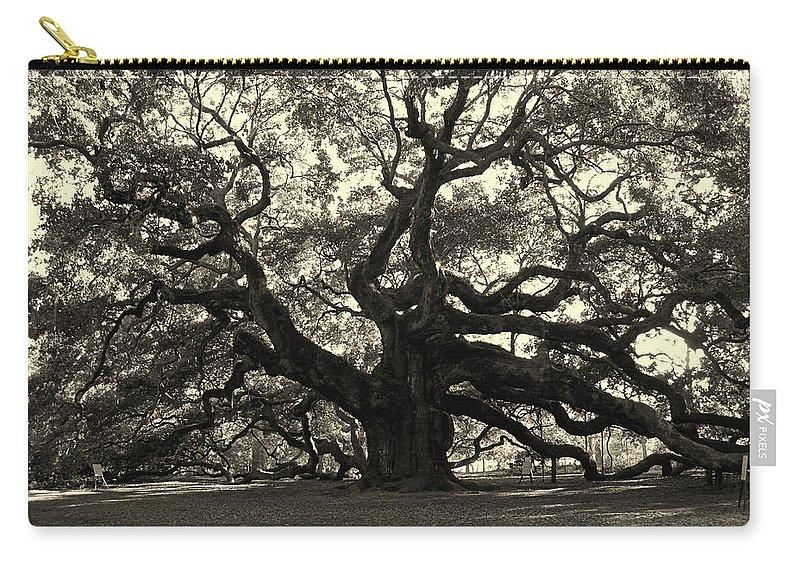Angel Oak Carry-all Pouch featuring the photograph The Angel Oak by Susanne Van Hulst