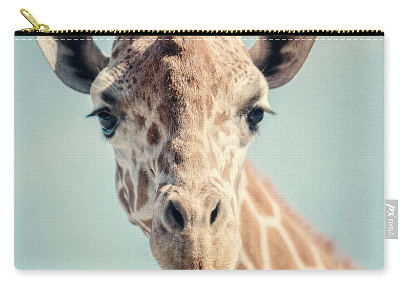 Giraffe Carry-all Pouch featuring the photograph The Baby Giraffe by Lisa R