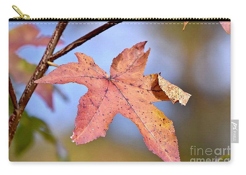 Autumn Carry-all Pouch featuring the photograph The Beauty Of Fall by Jeramey Lende