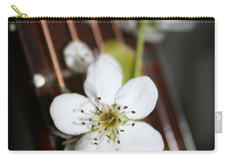 Still Life Photography Carry-all Pouch featuring the photograph The Beauty Of Strings by Linda Sannuti