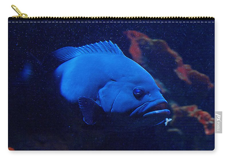Lehtokukka Carry-all Pouch featuring the photograph The Big Blue by Jouko Lehto