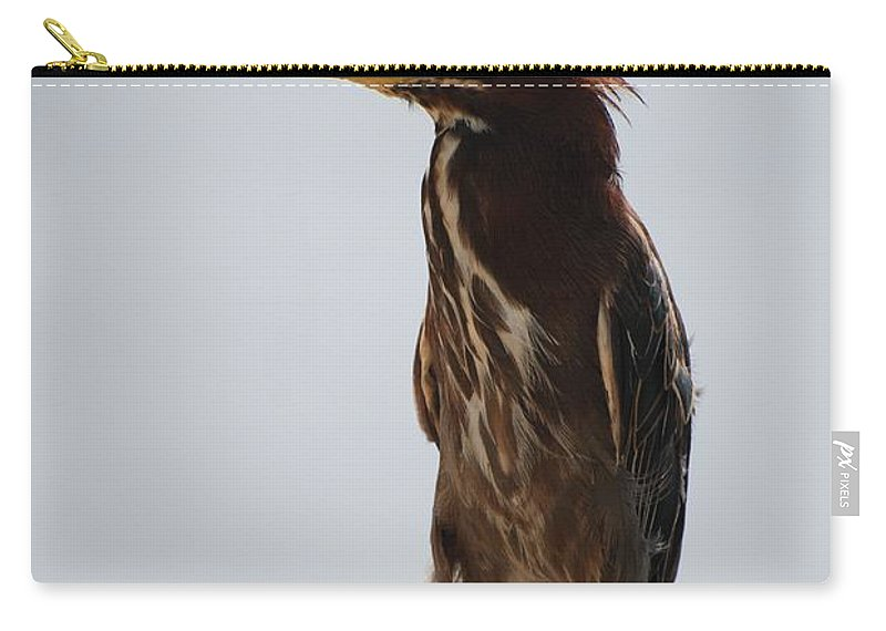 Birds Carry-all Pouch featuring the photograph The Bird by Rob Hans