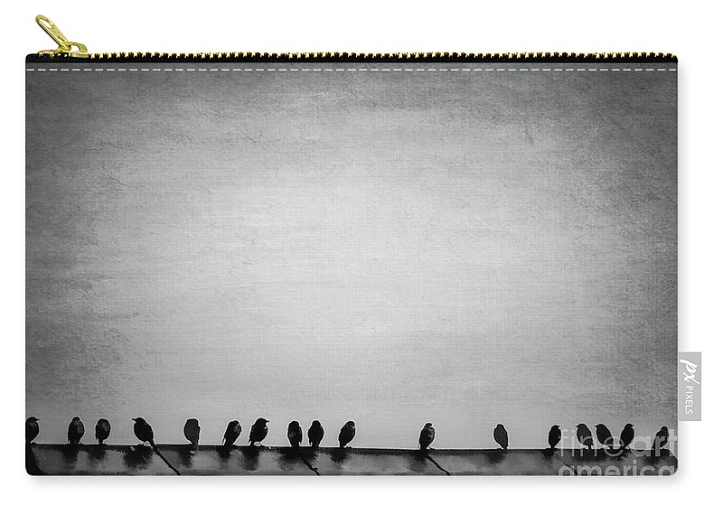 Birds Carry-all Pouch featuring the photograph The Birds by Francesca Winspeare