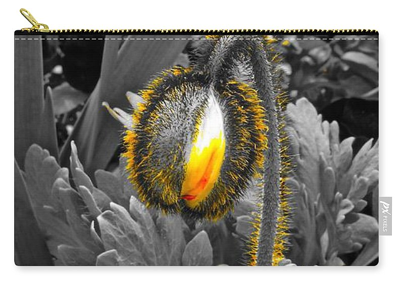 Chicago Botanic Garden Carry-all Pouch featuring the photograph The Bloom Within by Tim G Ross