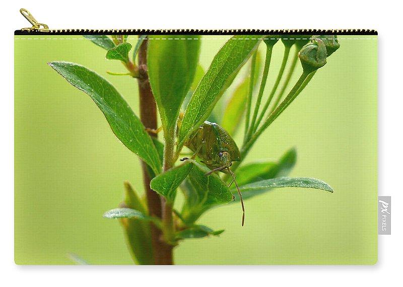 Lehtokukka Carry-all Pouch featuring the photograph The Bug by Jouko Lehto