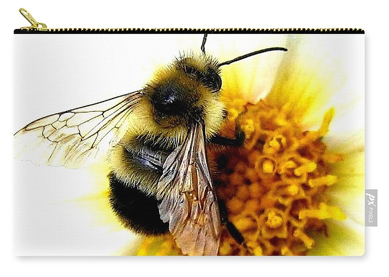 Honeybee Carry-all Pouch featuring the photograph The Buzz by Will Borden