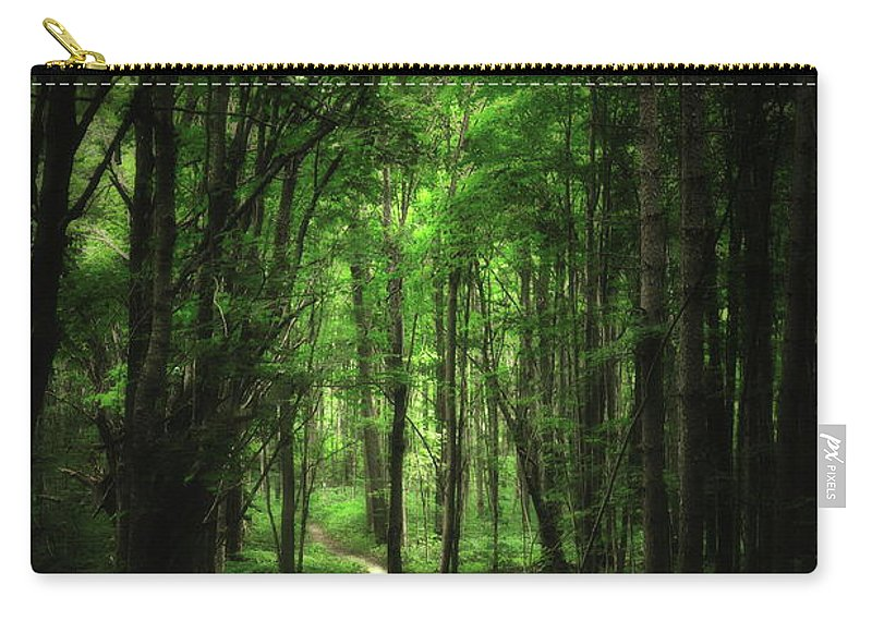 Forest Carry-all Pouch featuring the photograph The Cathedral Arch by Andrea Kollo