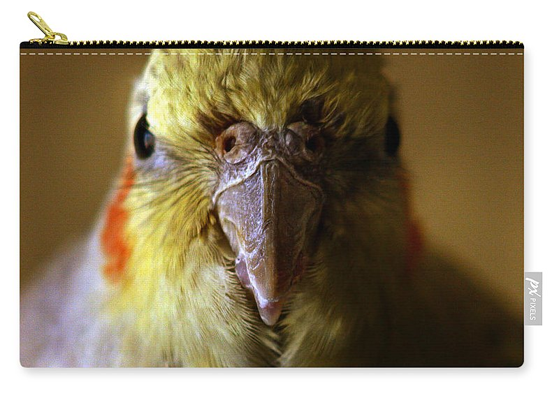 Cockatiel Carry-all Pouch featuring the photograph The Cockatiel by Angel Ciesniarska