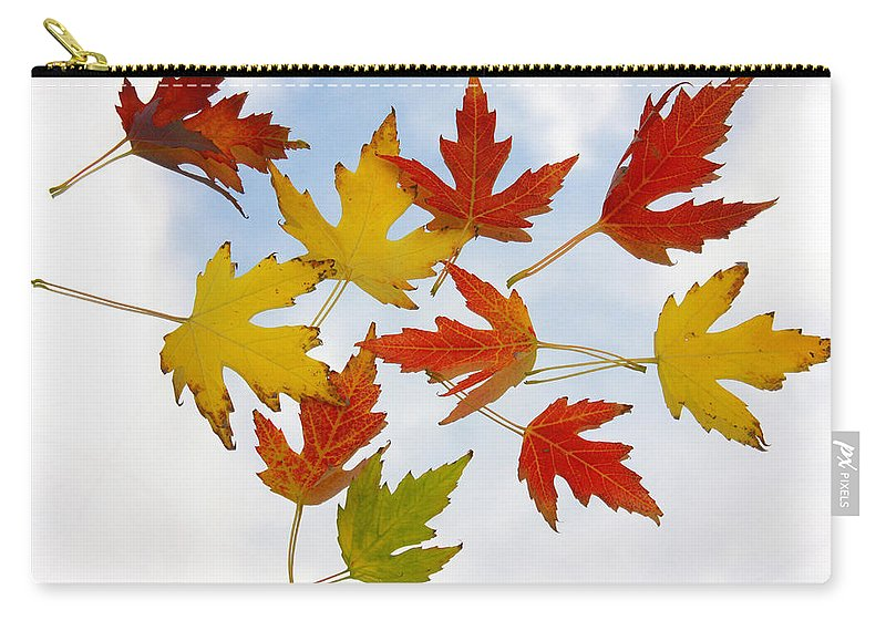 Carry-all Pouch featuring the photograph The Colors Of Fall by James BO Insogna