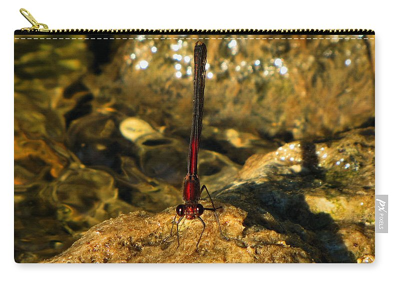 Landscape Carry-all Pouch featuring the photograph The Creek by September Stone