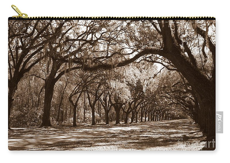 Live Oaks Carry-all Pouch featuring the photograph The Dance - Sepia by Carol Groenen
