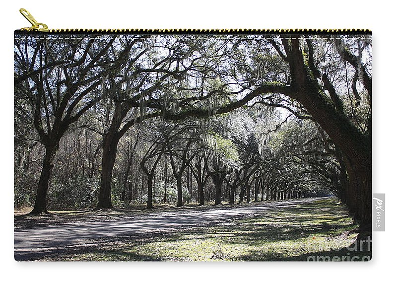 Savannah Carry-all Pouch featuring the photograph The Dance by Carol Groenen