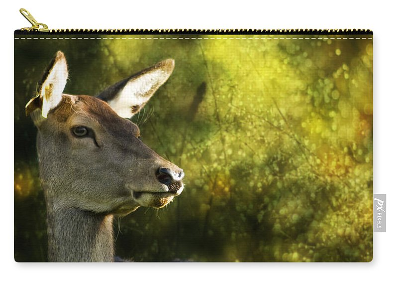 Deer Carry-all Pouch featuring the photograph The Deer by Angel Tarantella