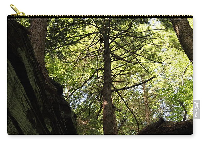 Tree Carry-all Pouch featuring the photograph The Fallen Triangle by Amanda Barcon