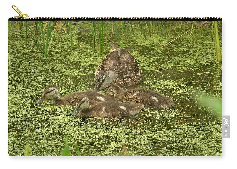 Duck Carry-all Pouch featuring the photograph The Family by Terrie Stickle