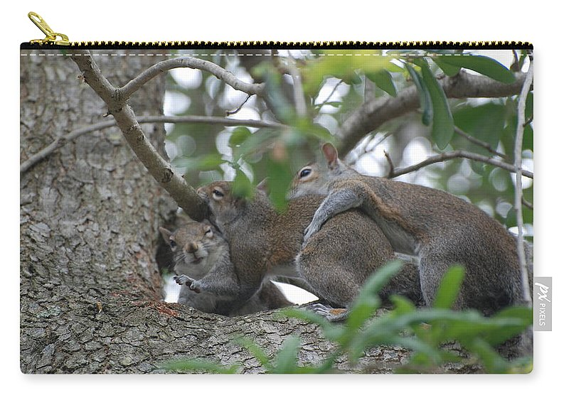 Squirrels Carry-all Pouch featuring the photograph The Fight For Life by Rob Hans