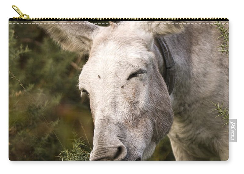 Donkey Carry-all Pouch featuring the photograph the Funny Donkey by Angel Ciesniarska