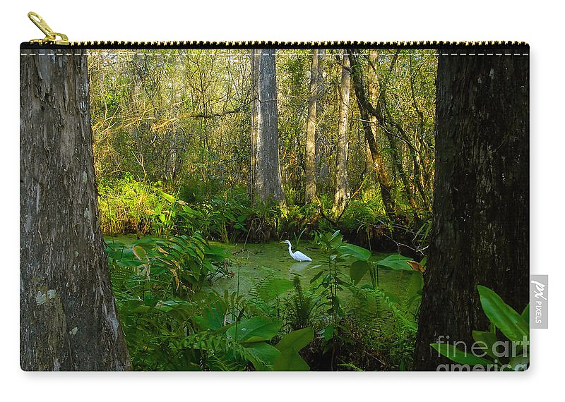 Corkscrew Swamp Carry-all Pouch featuring the photograph The Great Corkscrew Swamp by David Lee Thompson
