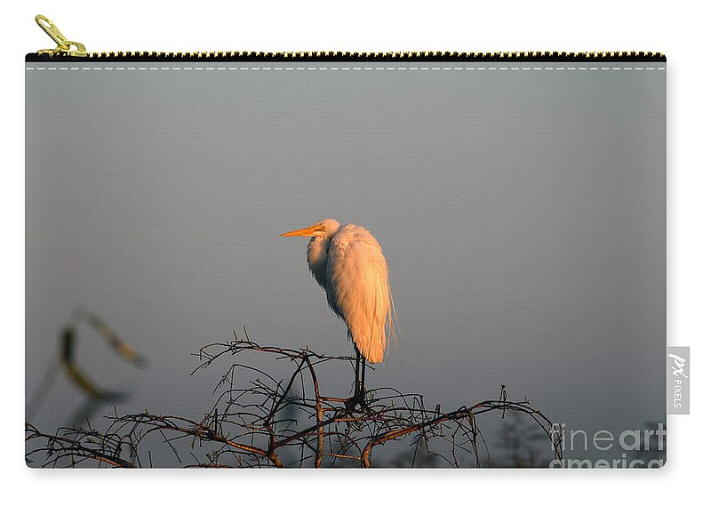 Egret Carry-all Pouch featuring the photograph The Great Egret by David Lee Thompson
